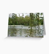 Through the willow Greeting Card