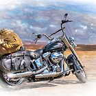 Freedom of the Road by Viv Thompson