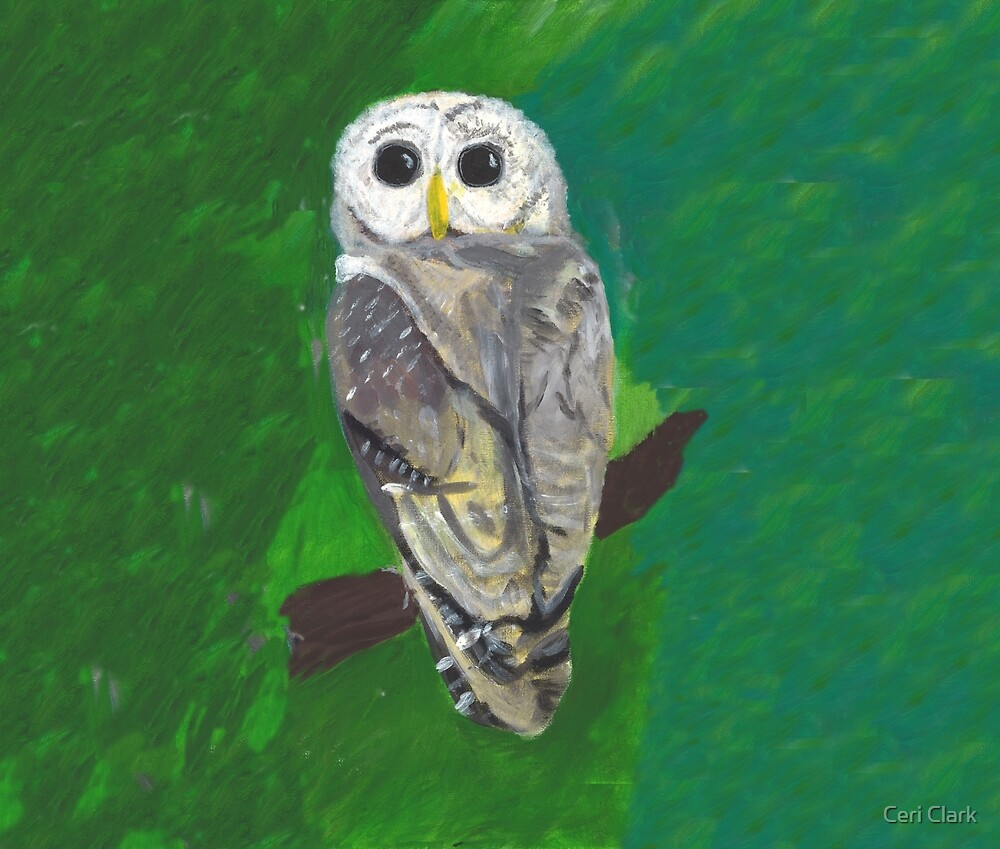 Owl Reproduction Painting on Green Background by Ceri Clark