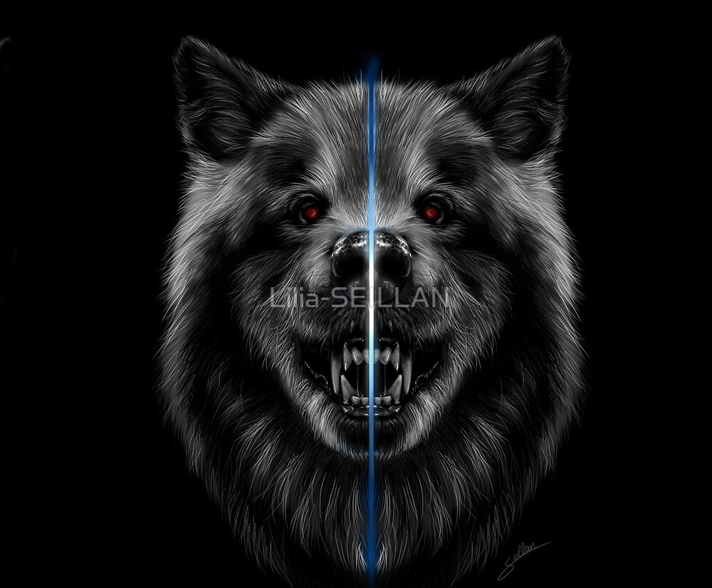 Power of the wolf by Lilia-SEILLAN