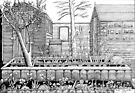 279 - THE FOOT OF OUR GARDEN - DAVE EDWARDS - INK - 2018 by BLYTHART