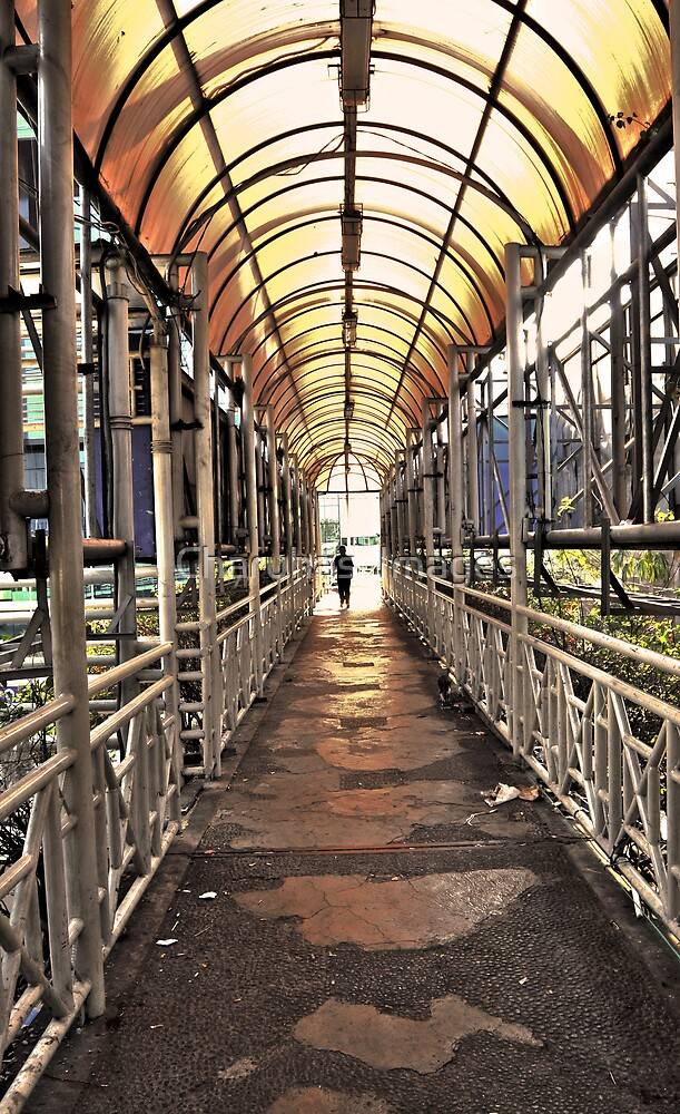 Lonely Walk by Charuhas  Images