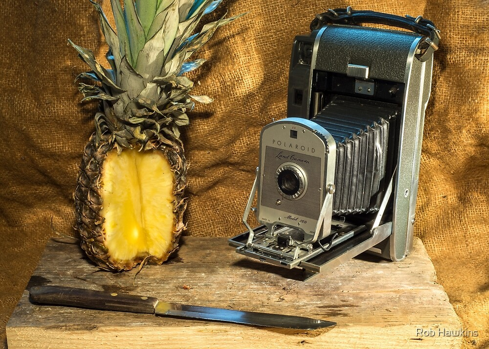 Polaroid and Pineapple  by Rob Hawkins