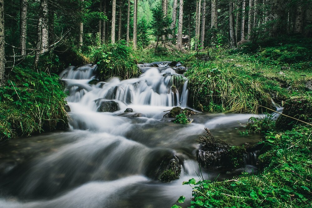 water in the wood by laramartone
