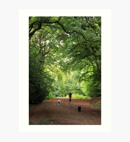 Early Morning Walk with Man's Best Friend(s) Art Print