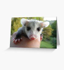 Hi Everyone Greeting Card