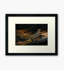Regal Reptile Framed Print