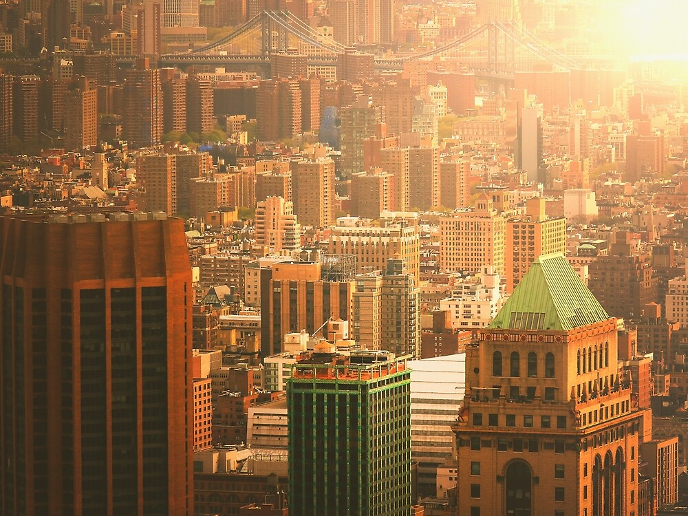 NYC Skyline by Vivienne Gucwa