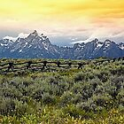 Grand Tetons and a Fence by Teresa Zieba
