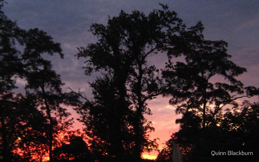 Painted Sky by Quinn Blackburn