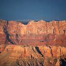 Sun Drenched Grand Canyon by Barbara Burkhardt