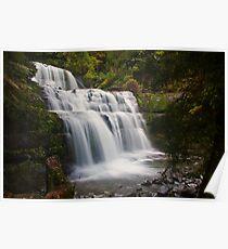 Liffey Falls, Tasmania Poster
