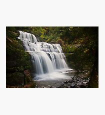 Liffey Falls, Tasmania Photographic Print
