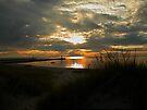 Lake Michigan Sunset by Shelly Harris