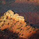 In the Spot Light - Grand Canyon by Barbara Burkhardt