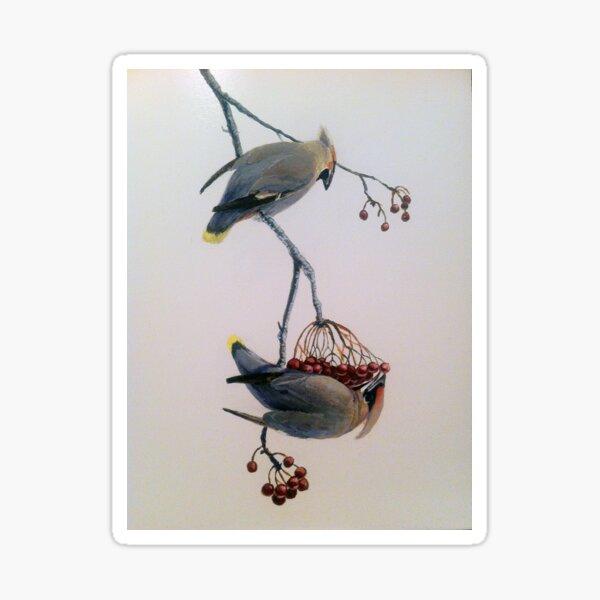 Cedar Waxwings - Pendular Balance Sticker