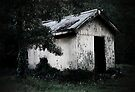 The Old Gardener's Shed by LeeoPhotography