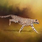 Cheetah Running by Sharon McConnell