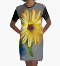 Sunkissed Marie Graphic T-Shirt Dress