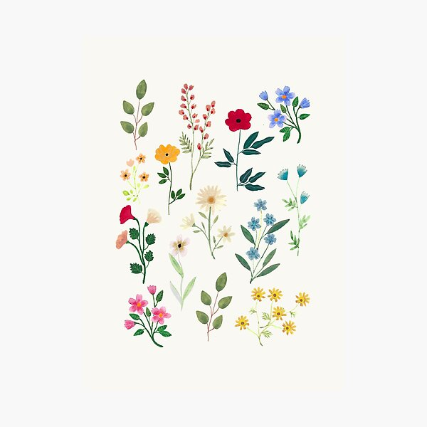 Spring Botanicals Photographic Print