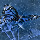 Butterfly Magic by maileilani