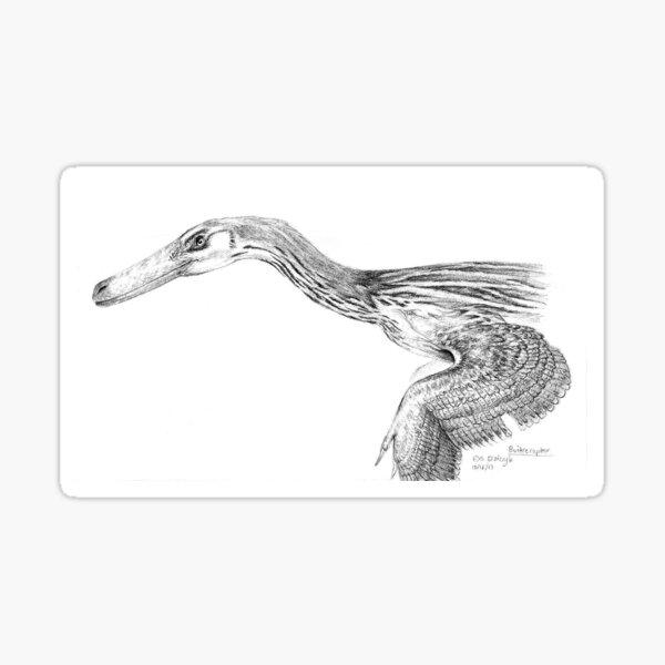 Buitreraptor - Resplendent in Grey Sticker