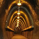 Fernleigh Tunnel - Newcastle NSW by Bev Woodman