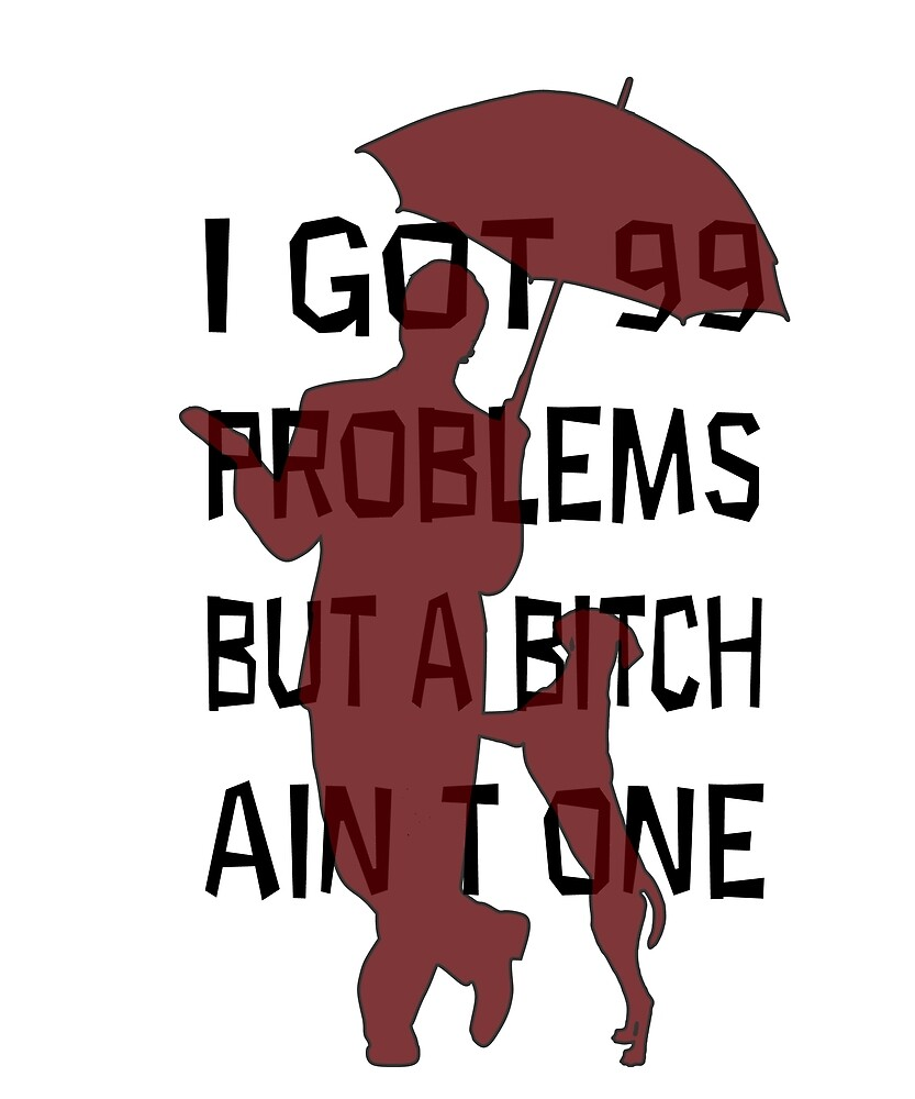 I Got 99 Problems But A Bitch Ain't One by Sean Hynes