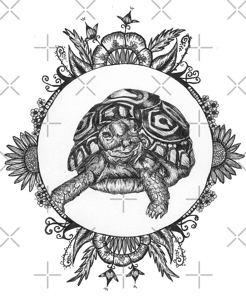 Baby leopard tortoise by PicturePals