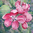 Flower of Crab-apple by Anna Miarczynska