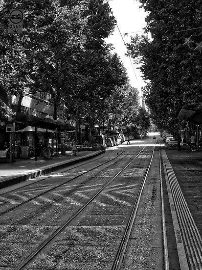 Melbourne Tram Tracks by Michael McGimpsey