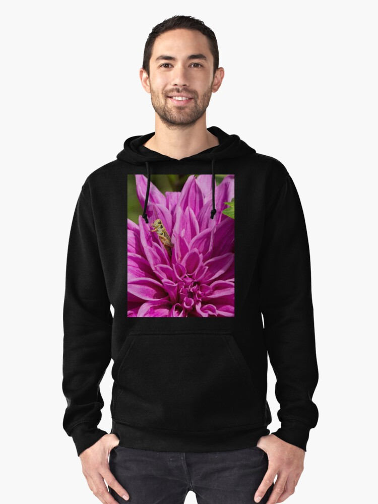 Snug As A Bug Pullover Hoodie Front