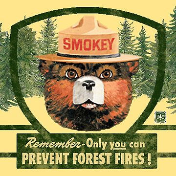 Smokey the Bear - Only You Can Prevent Forest Fires! by LostVox