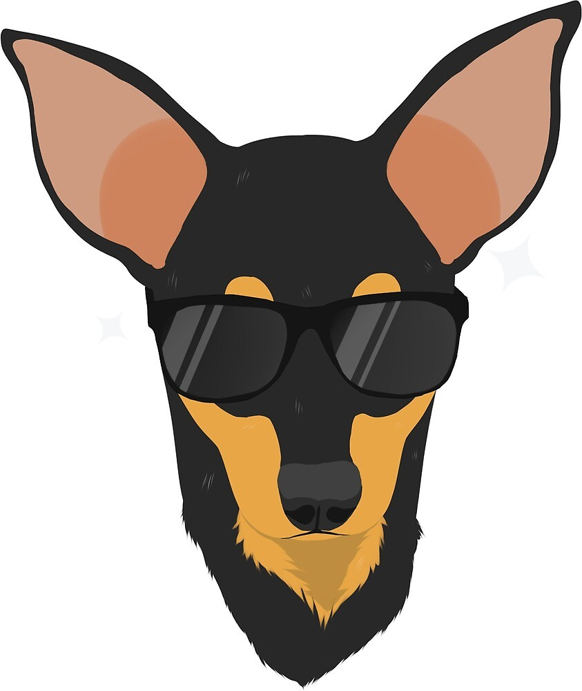 Cool Miniature Pinscher 2 by atheias