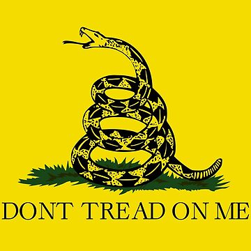 Don't Tread On Me Flag by DarienBecker