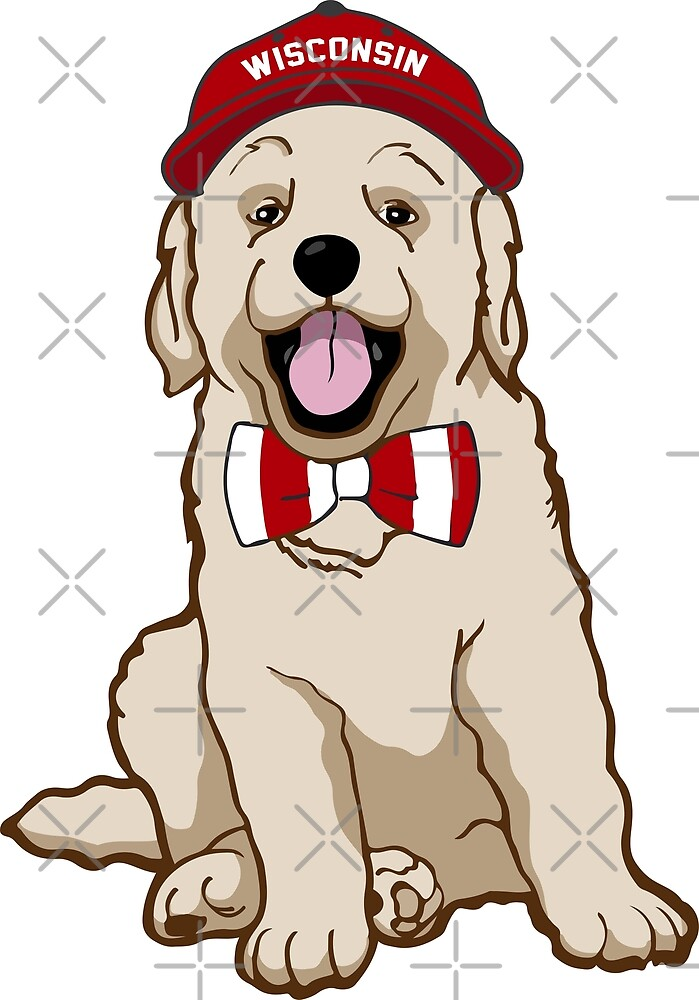 Wisco Pup by Shayli Kipnis
