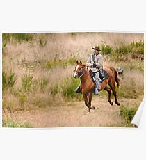 Confederate Cavalryman Poster