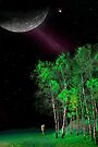 Under The Moon by Igor Zenin
