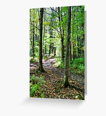 In The Woods With Nature Greeting Card