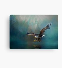 Eagle swooping for fish Canvas Print