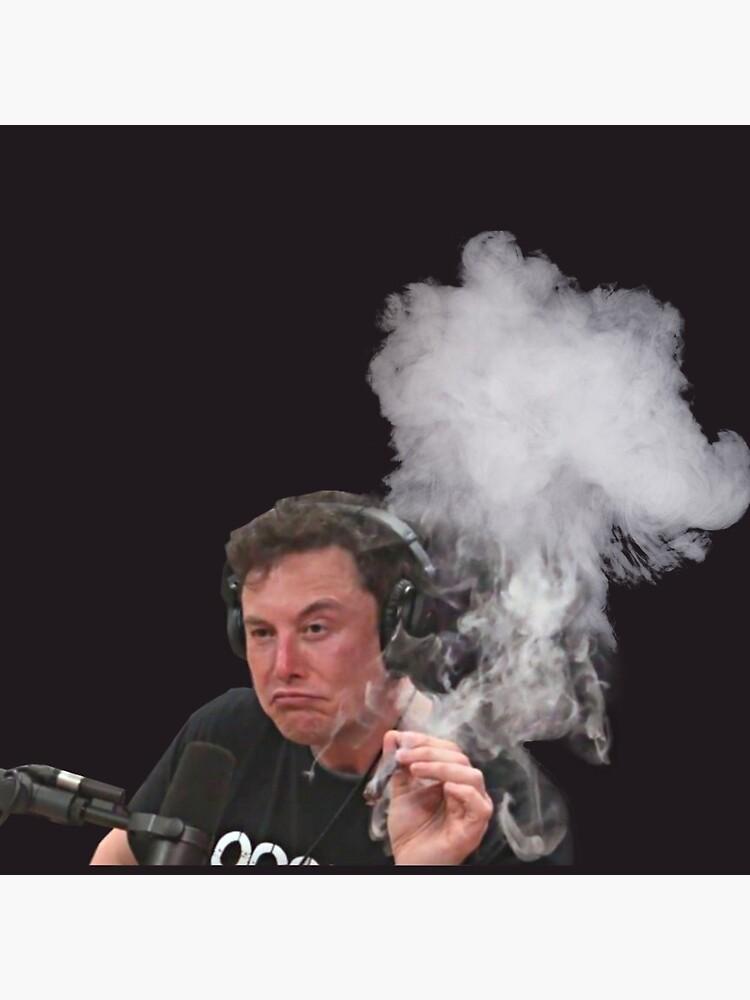 Elon Musk Smokes by stertube
