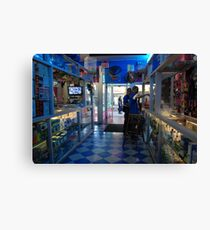 exotic pet store in brooklyn Canvas Print