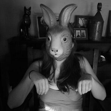White Rabbit by Diana16