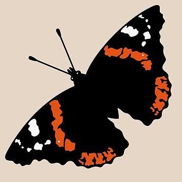 Butterfly (Red Admiral / Vanessa Atalanta) by MrFaulbaum