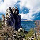 Mono Lake Tufa by Nancy Richard