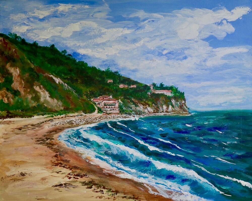 Burnout Beach, Palos Verdes Pennisula by Tom Roderick