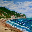 Burnout Beach, Palos Verdes Pennisula by Tom Roderick