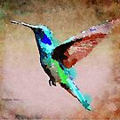 Abstract Hummingbird by Leon Woods