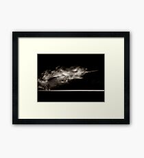A path is lit for the forgotten ones Framed Print