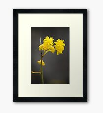 Dash of Yellow Framed Print